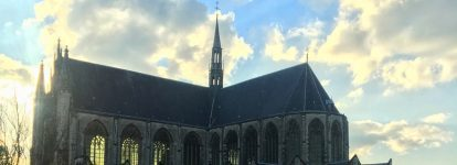 Summer in Leiden and The Hague through student eyes